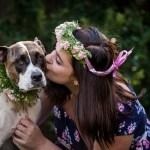 PetStock Pet Adoption