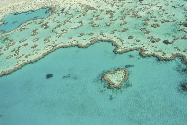 Great Barrier Reef Australian Tours