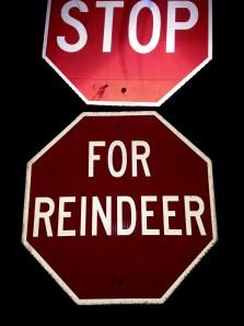 Stop for Reindeer!