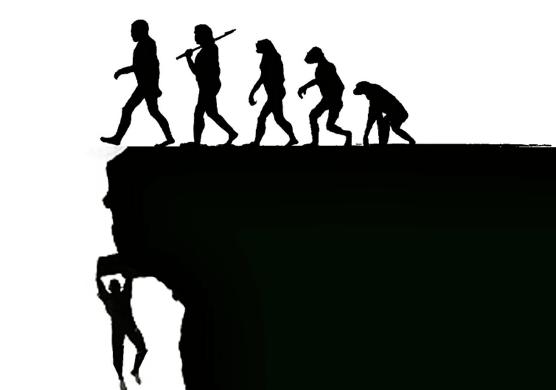 evolution2.png