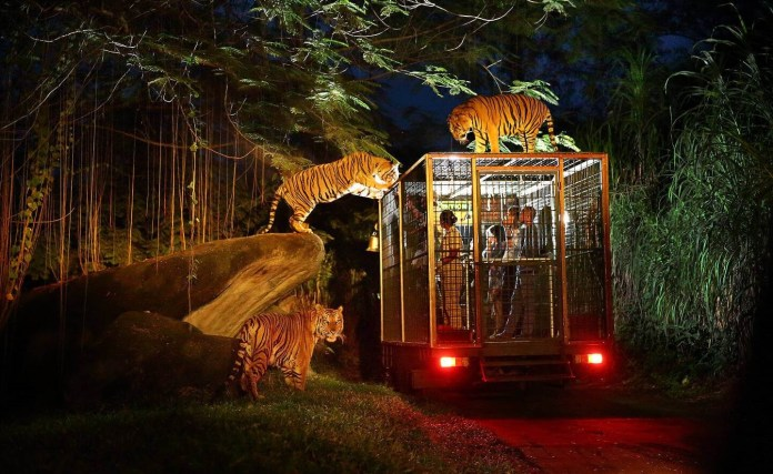 The 5 Best Zoos In Bali Authentic Indonesia Blog
