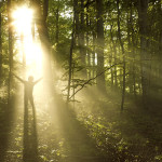 Mindfulness - The Key To Resilience