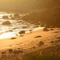 Dreamy - Ingonish Beach