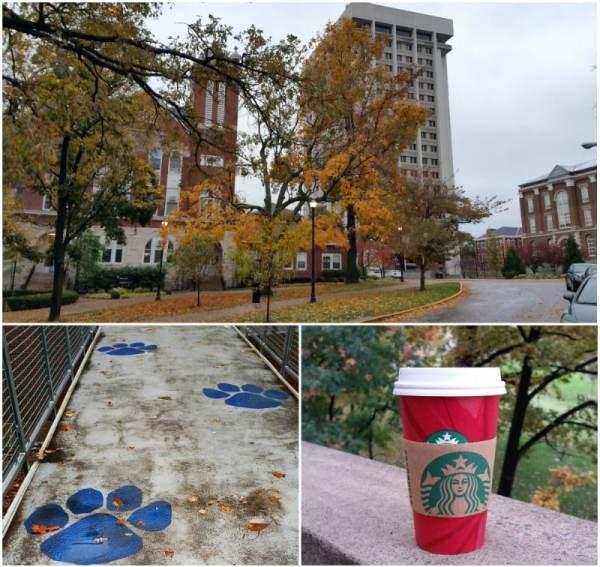 fall-campus