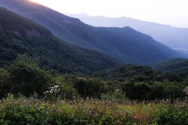 mountain view in Asheville, North Carolina