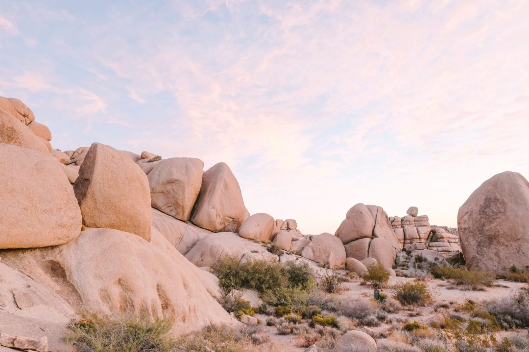 landscape photo of Joshua Tree National Park