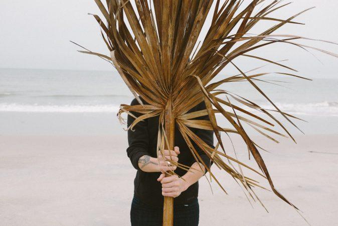 Edisto Island palm frond