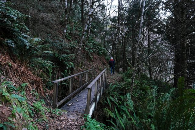 Erin McGrady hiking the Samuel H. Boardman trail
