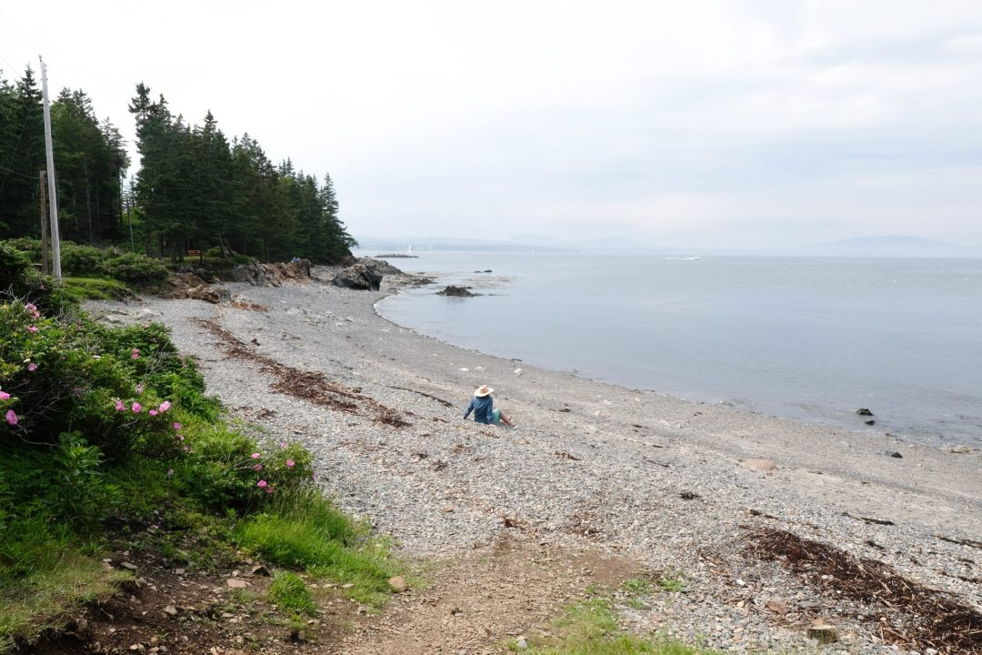 Maine 7
