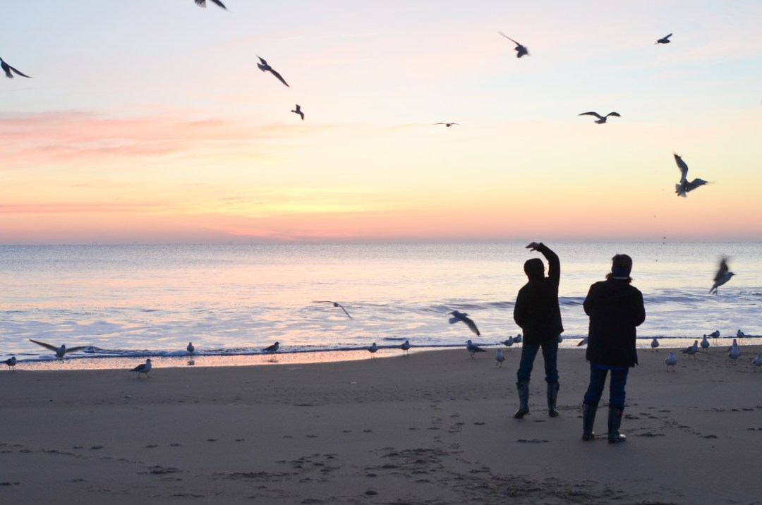 watching the sun rise in Ocean City, MD