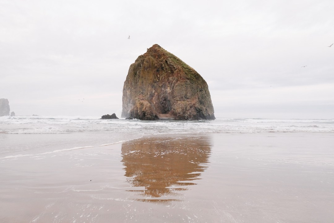 Cannon Beach Authentic Asheville.jpg
