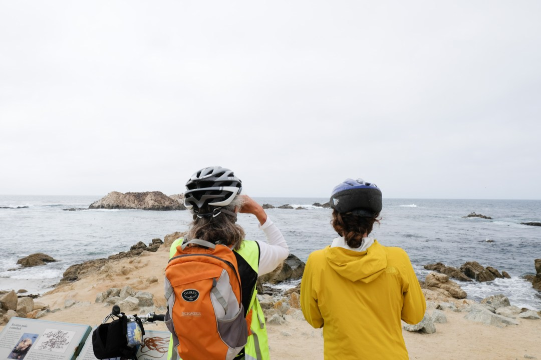 Visiting Asilomar State Beach and Conference Grounds