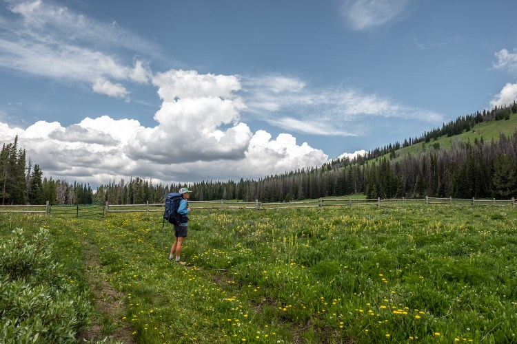 Erin McGrady stares off into the distance as she stands on a trail behind Togwotee Mountain lodge. She is dressed in blue shorts and a blue jacket with a blue backpack and a green hat on. There are small yellow wildflowers in the foreground.