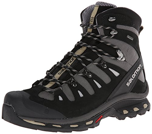 Salomon Men's Quest 4D 2 GTX Hiking Boot