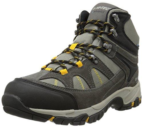 Hi-Tec Men's Altitude Lite I WP Hiking Boot, Charcoal/Warm Grey/Gold,10 M US