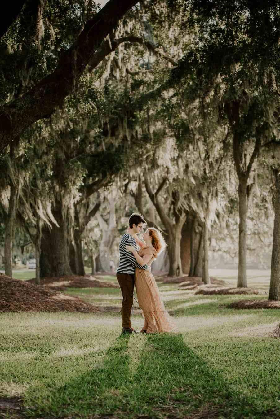 Back-lit photo under the mossy oaks