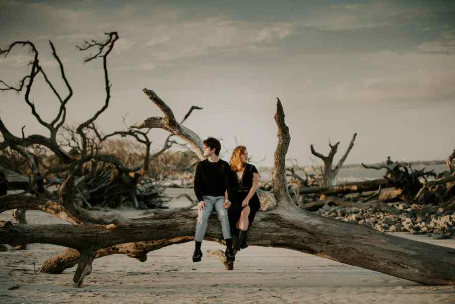 Moody photo of couple on downed tree