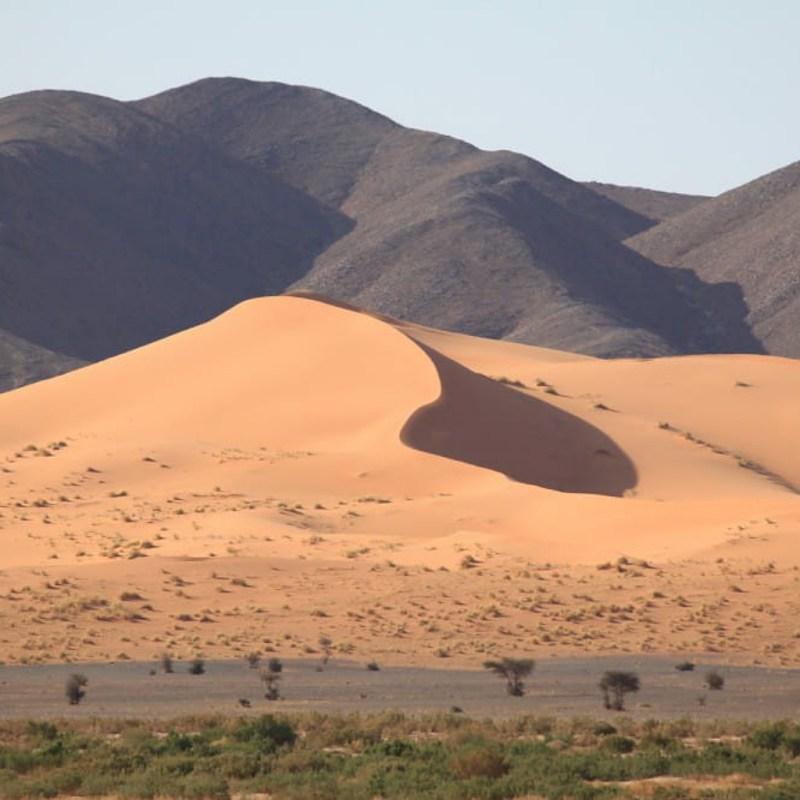 sahara roads tour