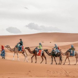 10 Day desert tour from Tangier