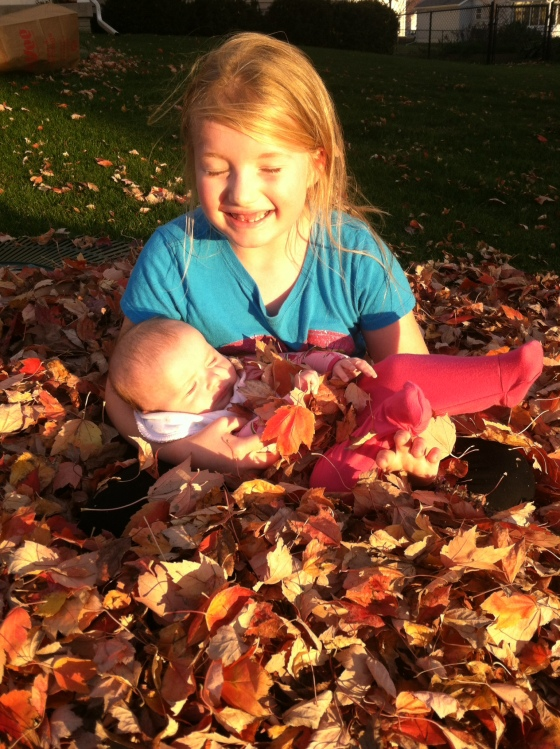 in the leaves, looking at the sun