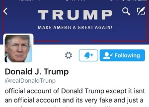 fake donald trump twitter account