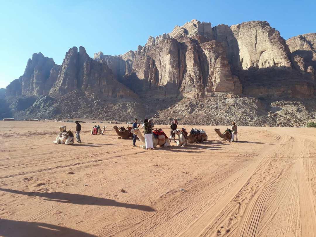 wadi rum camel trek