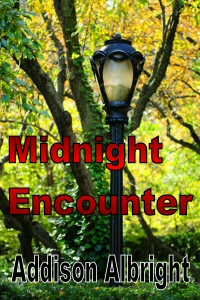 Midnight Encounter - Cover