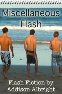 Miscellaneous Flash - dreamstime_xs_1173905