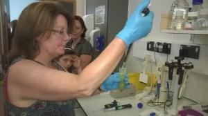 Photo of Dr Gillespie syringing liquid