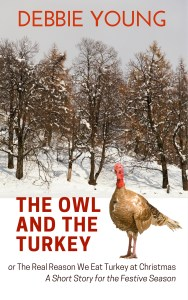 The Owl and the Turkey - new cover with snow for Kindle