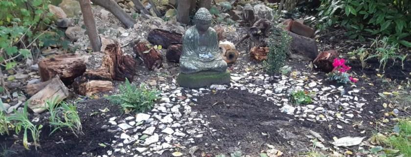 Photo of my circle of life garden