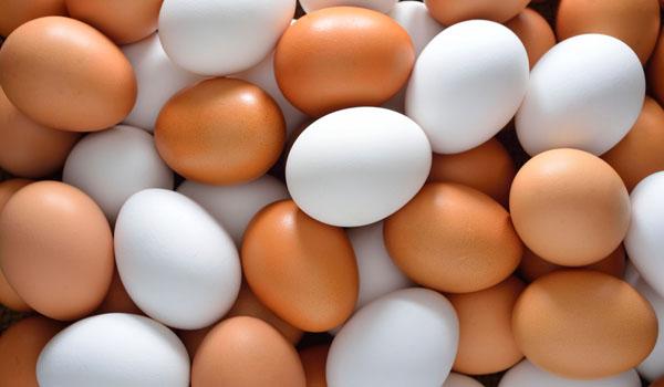 Ovos - Home remédios para a perda de cabelo