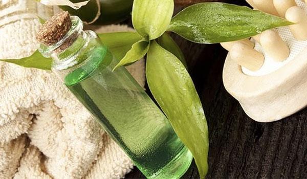 Tea Tree Oil - Home remédios para cicatrizes da acne