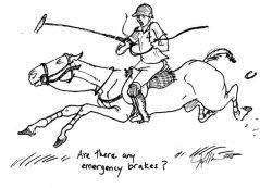 PPP_emergency brakes