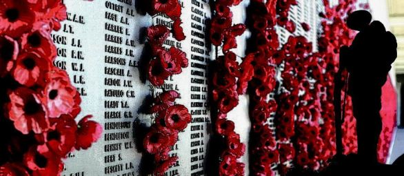 author Joanne Reed This Is Your Quest Celebrating Remembrance Day - 11th November