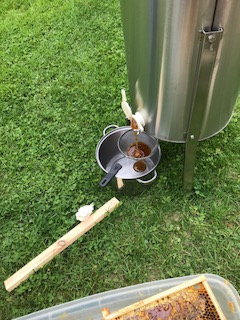 Honey pouring from the extractor.