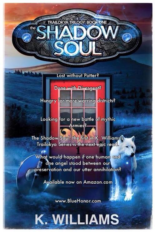 The Shadow Soul, Book One of The Trailokya Trilogy