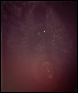 Burning Down, The Trailokya Trilogy, author K. Williams, book series, fantasy books