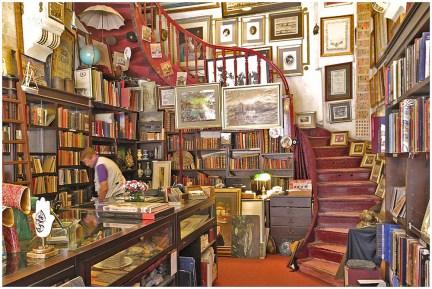 Istanbul Bookshop