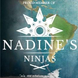 Nadine's Ninjas logo