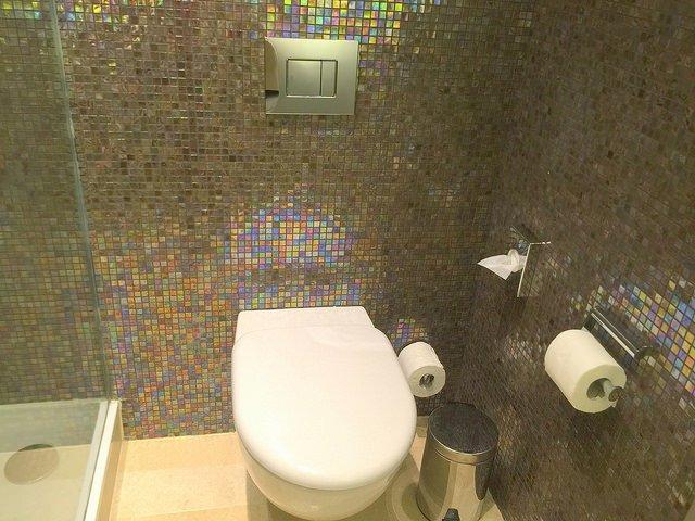 Why the Sheraton Tel Aviv is Still Family Friendly toilet
