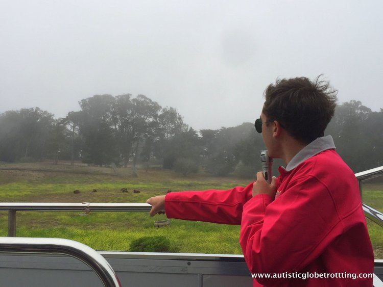 City Sightseeing with San Francisco's Hop On Hop Off Bus guide