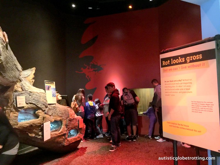 Exploring the California Science Center with Kids rot