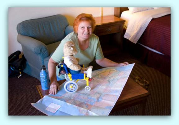 Q&A with Candy Harrington author of '22 accessible road trips' maps