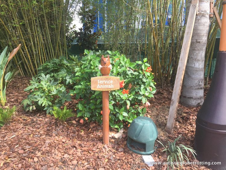 16 Best Tips for Visiting Universal's Volcano Bay with Autism dogs