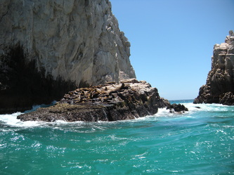 Visiting Cabo San Lucas' El Arco With Autistic Kids sea lions