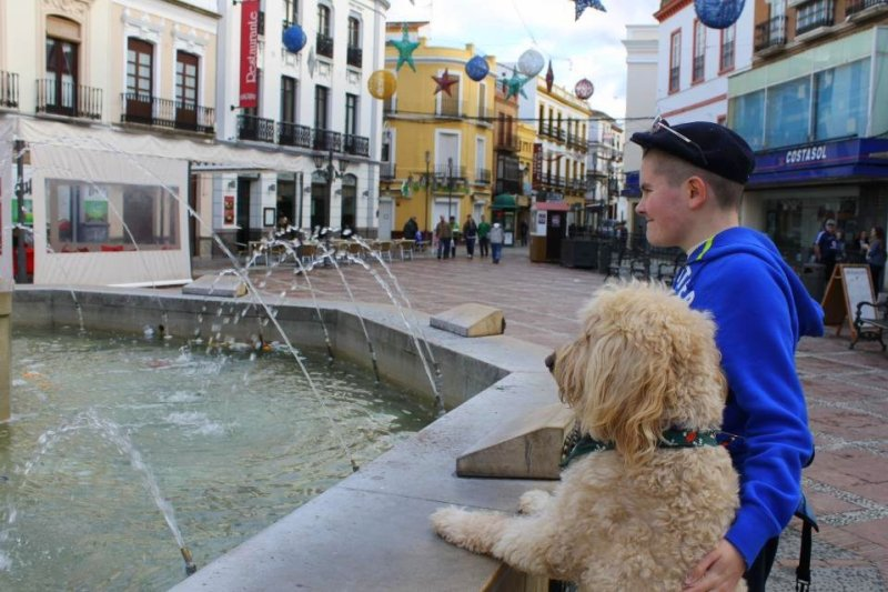 Q&A with Clive -Ireland's Autism Service Dog Extraordinaire fountain