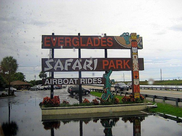 Five Family Friendly Fort Lauderdale Experiences park