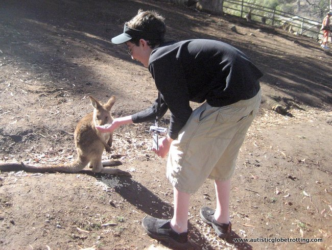 Family Fun at Tasmania's Bonorong Sanctuary meet