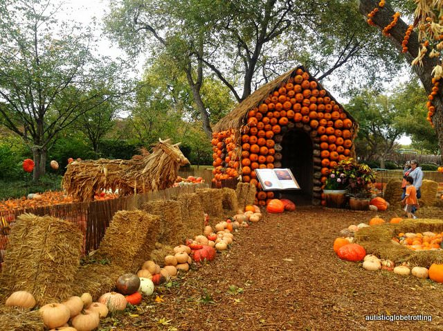 Five Sensory Attractions worth visiting in Dallas pumkins